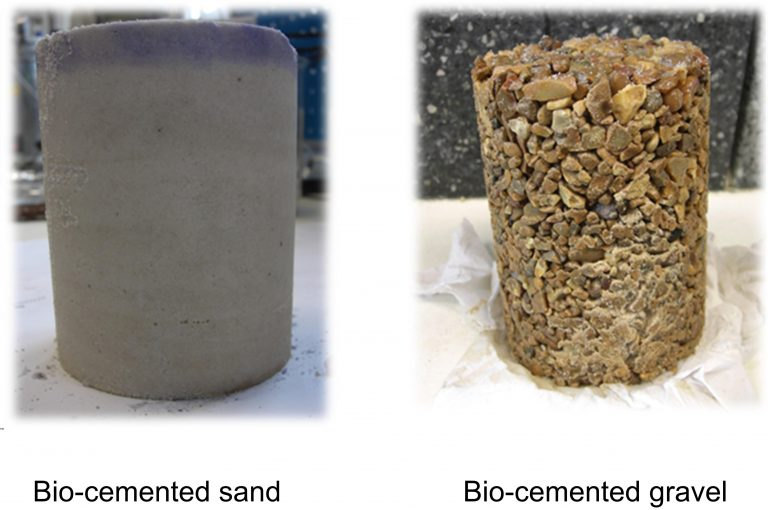 bio cement essay The cement is then packed and marketed for sale the second diagram presents how the concrete is sample answer 2: the two diagrams illustrate the cement-making process we can see from the.